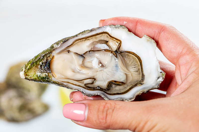 "FEATURED IMAGE: ""Rolling waves, foam and bubbles clinging to sand as the ocean pulls back from the beach and the sun beats on"" – Chef Paul Dukai waxing lyrical on oysters, the stars of the show at the Oyster and Bubbly Festival, at the Pearls in Umhlanga on 28 February.  Picture: Marco Verch/flickr.com"